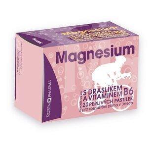 Rosen Magnesium 300 mg 20 perlivých pastilek