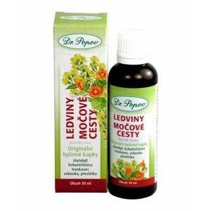 Dr. Popov Ledviny-močové cesty bylinné kapky 50 ml