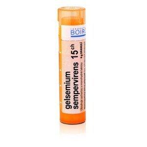 GELSEMIUM SEMPERVIRENS 15CH granule 1X4G