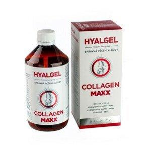 Hyalgel Collagen MAXX 500 ml