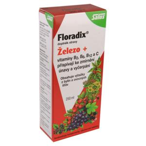 Salus Floradix 250ml - II. jakost