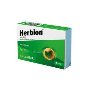 HERBION pastilka 16