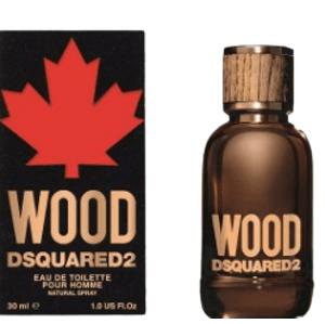 Dsquared2 Toaletní voda Wood pour Homme 30ml