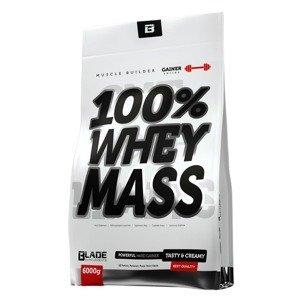HiTec Nutrition 100% Whey mass gainer bílá čokoláda 6000g