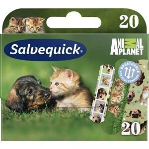 Salvequick Náplast se zvířátky pro děti Animal Planet 20ks