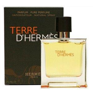 Hermes Terre D´ EDP 200ml