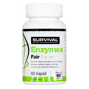 Survival Nutrition Enzymes Fair Power 60 kapslí