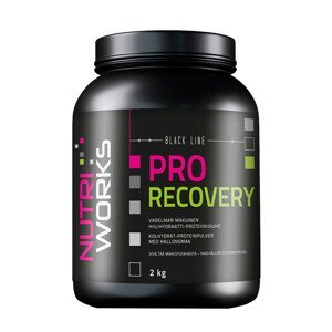NutriWorks Pro Recovery malina 2kg