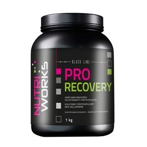 NutriWorks Pro Recovery malina 1kg