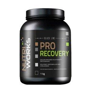 NutriWorks Pro Recovery čokoláda 1kg