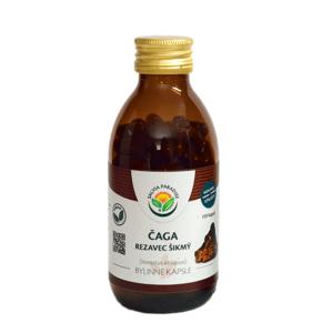 Salvia Paradise Čaga - chaga - rezavec šikmý 120 kapslí