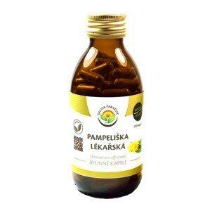 Salvia Paradise Pampeliška lékařská 120 kapslí