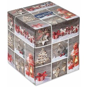BIG SOFT Winter 2vrstvé papírové kapesníčky v krabici 75 ks