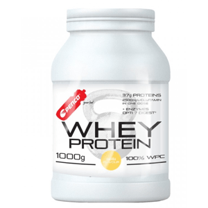 PENCO Whey protein vanilka 1000 g